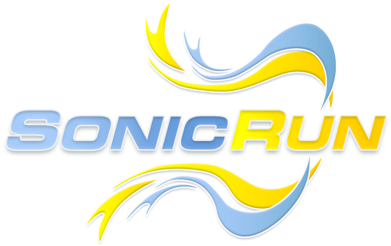 Sonic Run: Internet Search Engine
